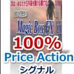 【激レア!】マジックボックスFXの購入特典について