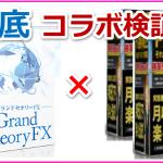 「パラダイムトレーダーFX」&「グランドセオリーFX」コラボ検証!